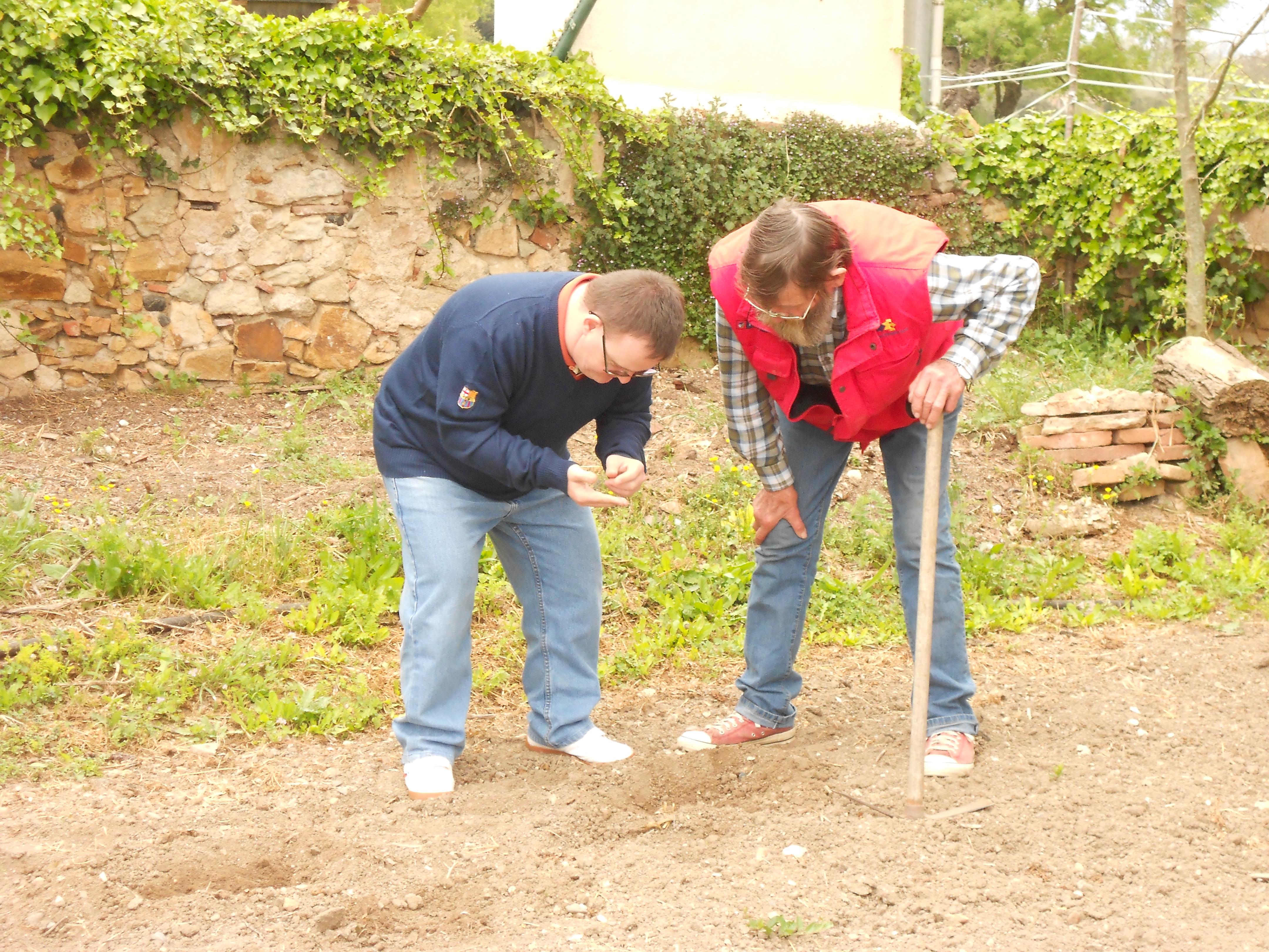 Plantada de carbasses amb en Josep